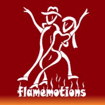 Salsaland Partner Flamemotions